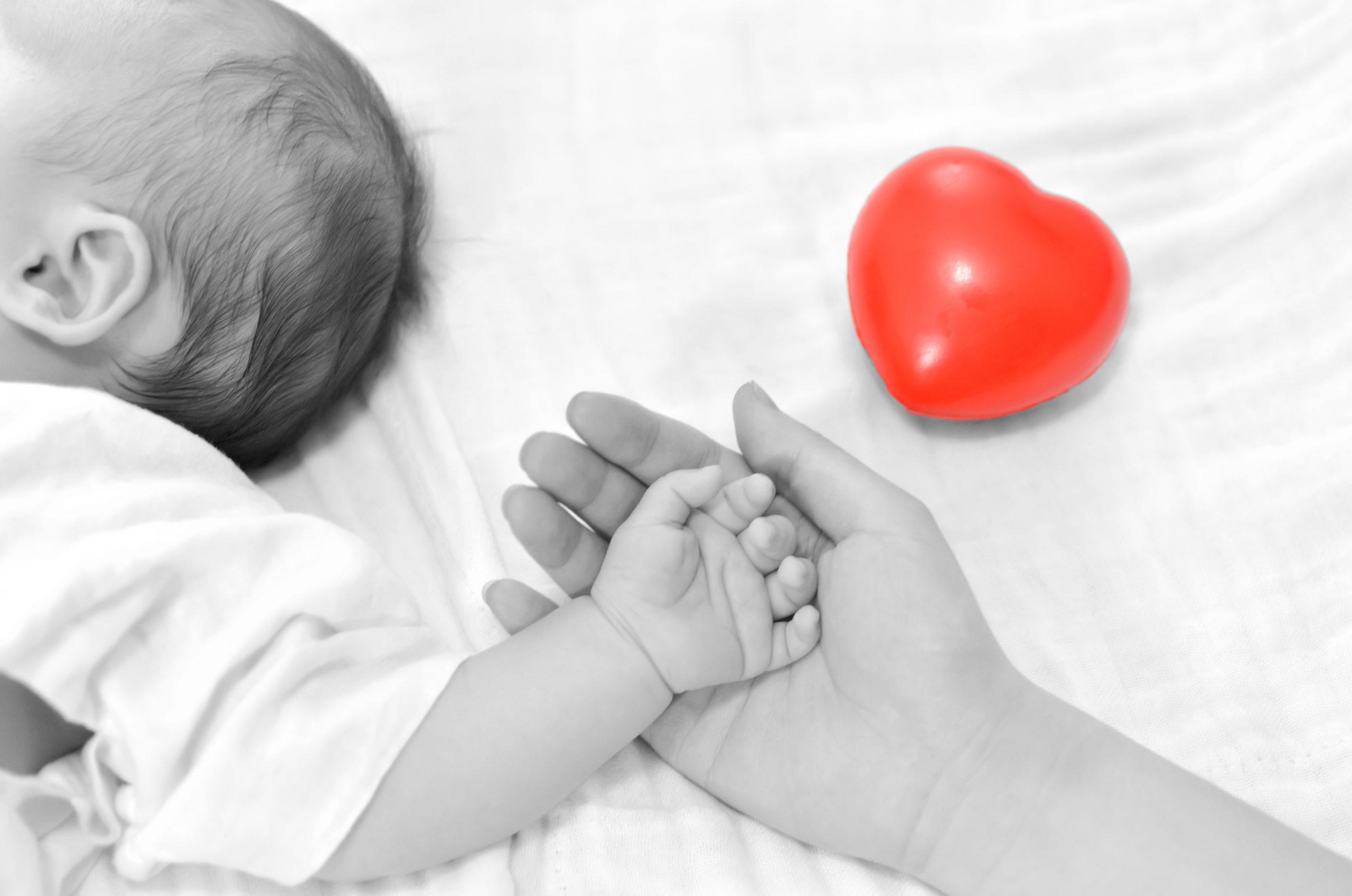 הפרושים שנותנות אמהות להתנהגות תינוקותיהן במהלך תקשורת